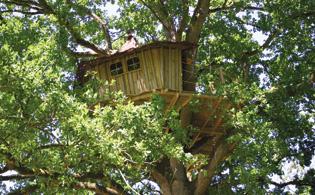 construire une cabane dans les arbres mag maison. Black Bedroom Furniture Sets. Home Design Ideas