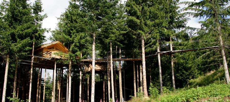 Construire une cabane dans les arbres mag maison - Fixation cabane dans les arbres ...