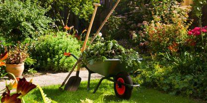 Simplifiez-vous la vie avec les accessoires de jardinage Outiror